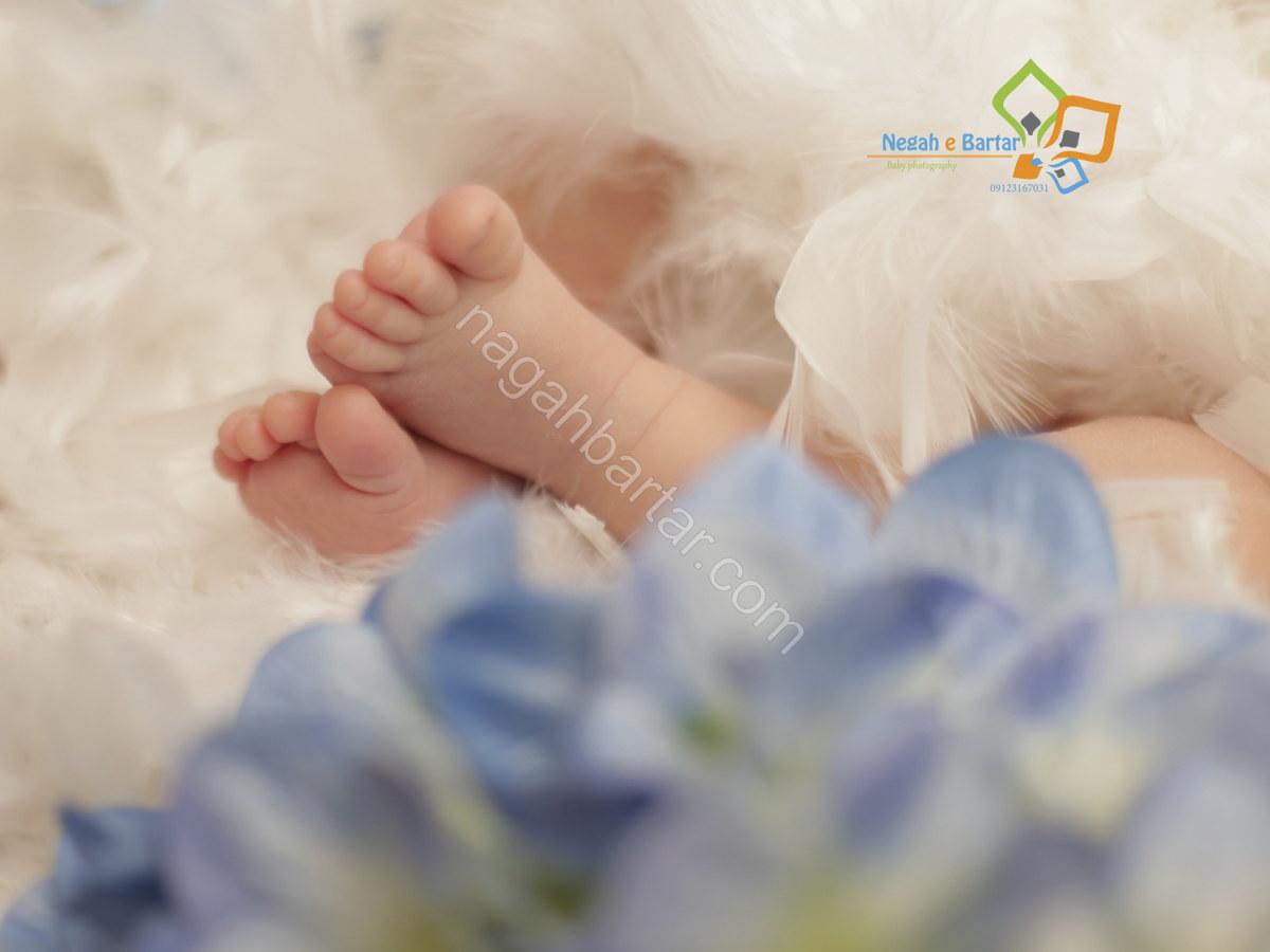 آتلیه عکاسی نوزاد (3)